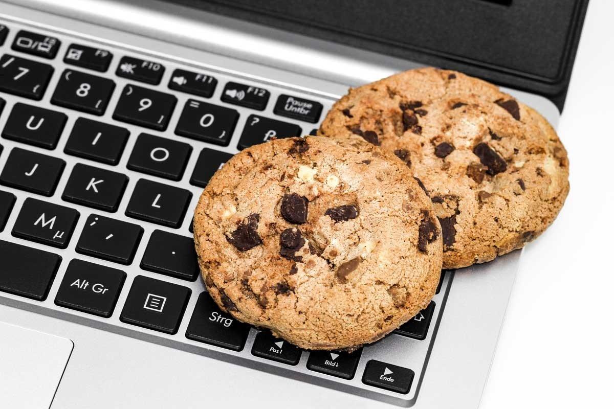 Privacybeleid en Cookies